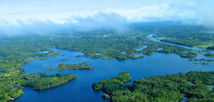 Amazon Rainforest Source Flickr@CIFOR