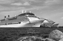 cruise black and white ted arison