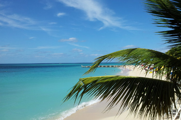 The Top Things to Do in Montego Bay