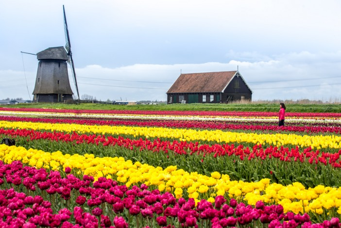 7 Must-See Destinations That Are Most Beautiful in Spring