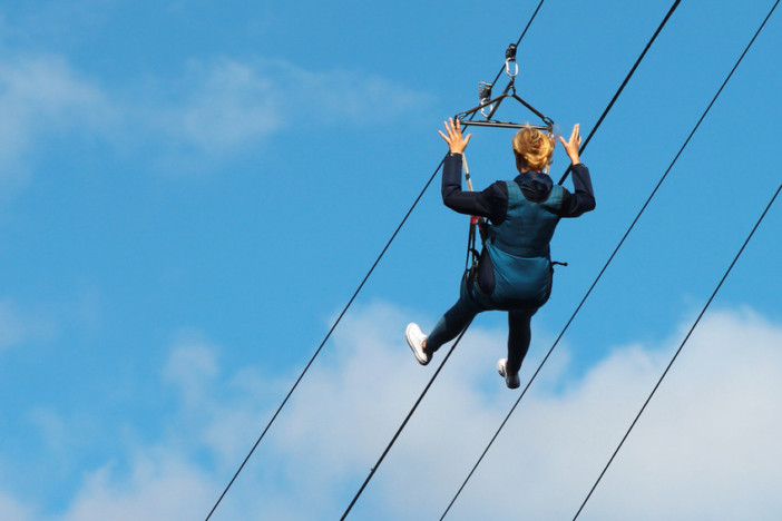 zip wire cruise