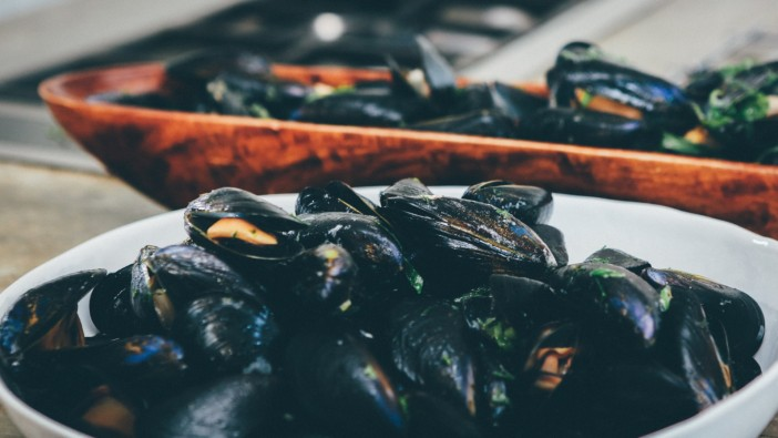 mussels - pixabay