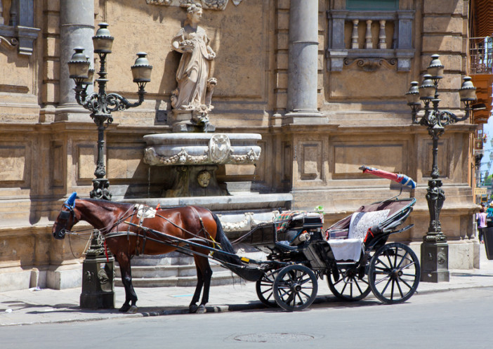 Horse and Carriage Palermo
