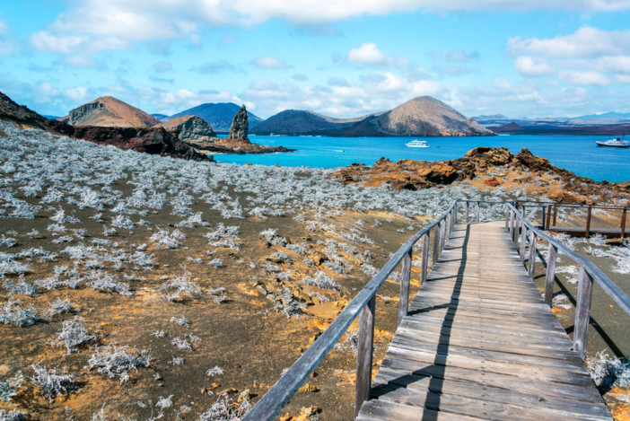 visiting the galapagos islands