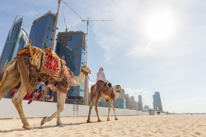 Tour guide offering tourist camel ride on Jumeirah beach on in Dubai, United Arab Emirates. Luxury Dubai Marina skyscrapers in background.