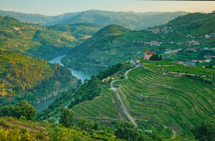 douro-river-vineyards