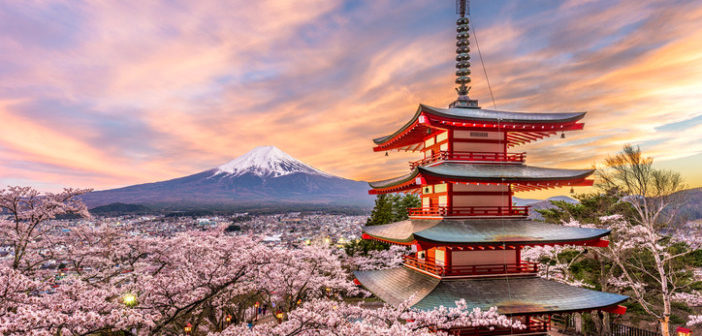 The Cruiser's Guide to Japan: All You Need to Know Before Visiting