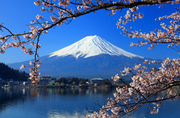 mount fuji japan cherry blossom