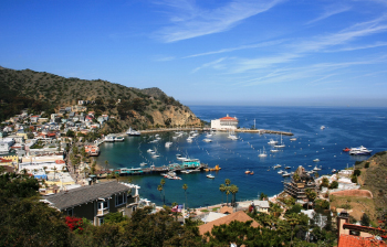 Santa Catalina Island, California, USA