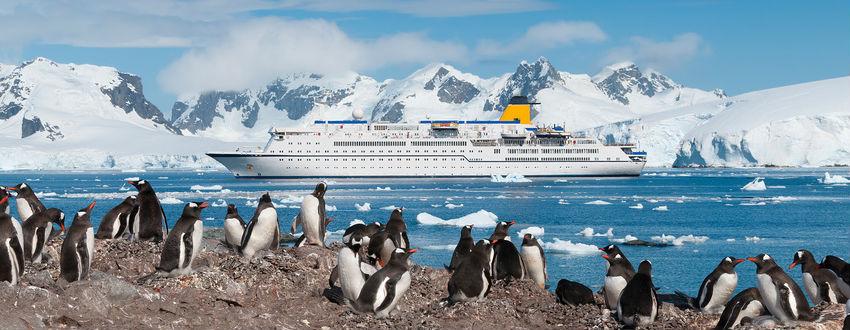 Antarctica Cruises And Deals 2019 2020